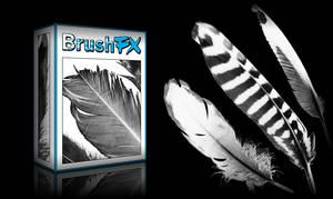 BrushFX - Bird Feathers Set 1 by BrushFX
