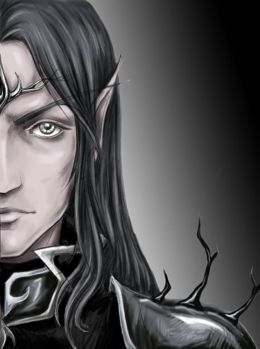 The Dark elven Lord by Aniril-Amakiir