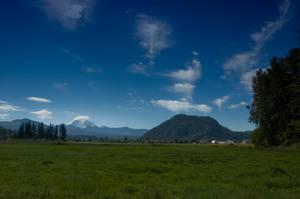 Mt. Rainier Landscape by happeningstock
