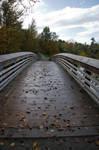 Leaves on Wood Bridge in Park
