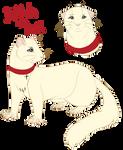 Delilah the Mink