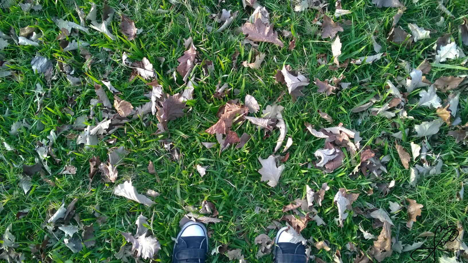 Minas de hojas by JaiGuruSun