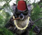 Shopped Koala with a Fez