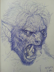 quick werewolf transformation sketch by spdmngtruper