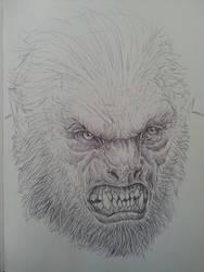 wolfman sketch by spdmngtruper