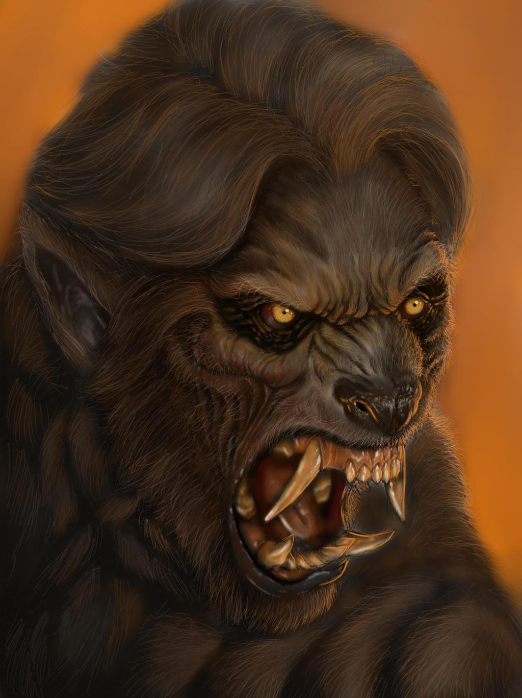 complete werewolf transformation sketch