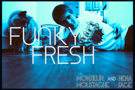 Cover Art - Funky Fresh (v. 02) - Single