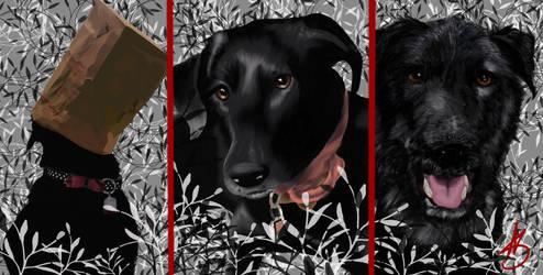 Hayley the dog by ValiantVivica