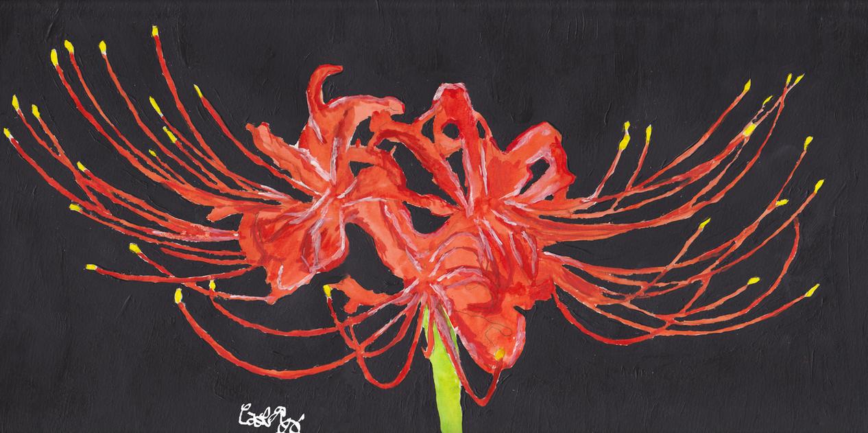 Spider lily by supernaturlis on deviantart spider lily by supernaturlis izmirmasajfo Image collections