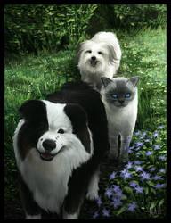 Pet Group Portrait (commission)