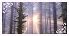 stamp: forest light by fishystamps