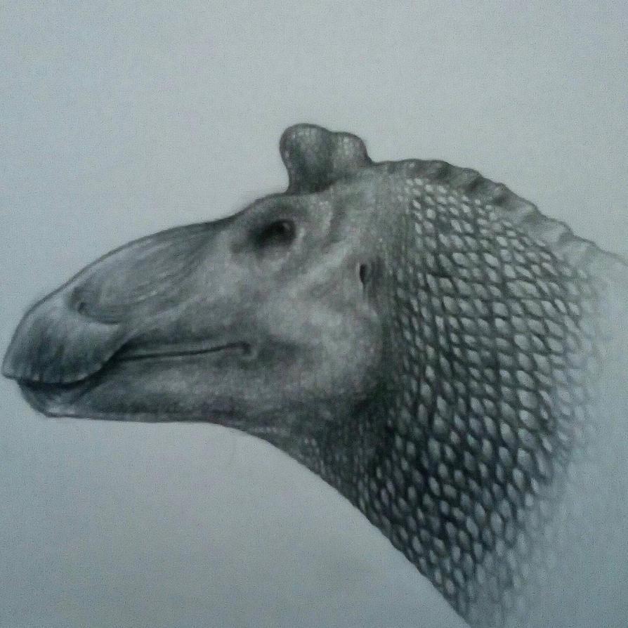 Edmontosaurus regalis by Spinosaurus14
