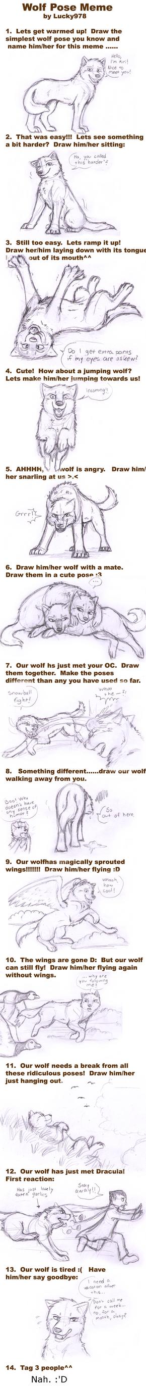 Wolf Pose Meme by Rayhaaja