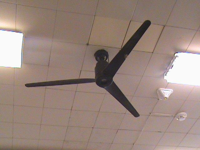 Emerson heat blender fan by baul104 on deviantart emerson heat blender fan by baul104 mozeypictures Gallery