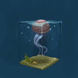 JellyFish by msats