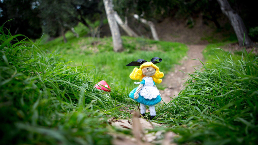 Alice in Wonderland doll :)  by LeeLeeAmi