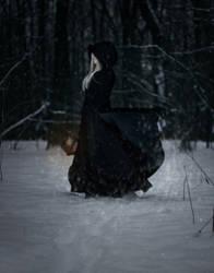 Lost in a snowy forest by Nefru-Merit