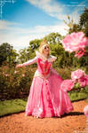 Princess Aurora -Sleeping Beauty