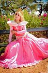 Princess Aurora - Disney