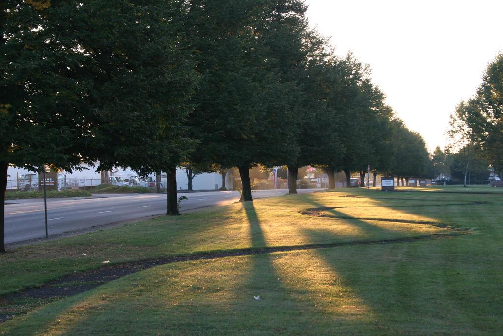 Shadows at the Park by magnusalpha