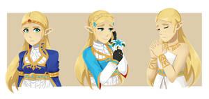 BOTW Zelda by TheChildrenReason