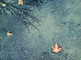 Autumn by Joannam88