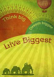 Think Big by DuirwaighStudios