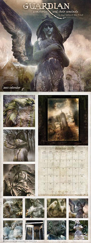 Guardian 2011 Calendar