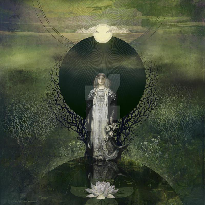 Moonlight Lotus by DuirwaighStudios