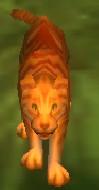 Orange Tabby Cat by Sakurafangurl2009