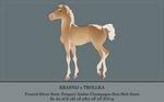 Foal Design For alexisARPG