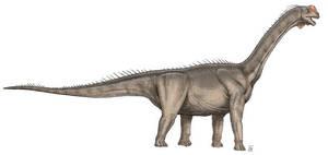 Cetiosaurus by Tessig