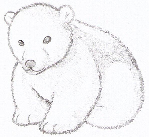polar bear cub by strovecos