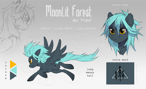 Moonlit Forest | reference