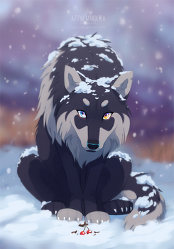 wolf's gift