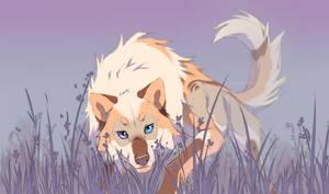 heather wanderer by azzai