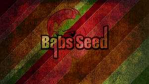 Babs Seed - grunged