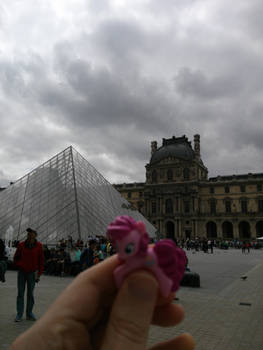 Ponies Around the World 2014 : The Louvre