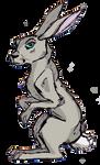 CS: Grey Rabbit