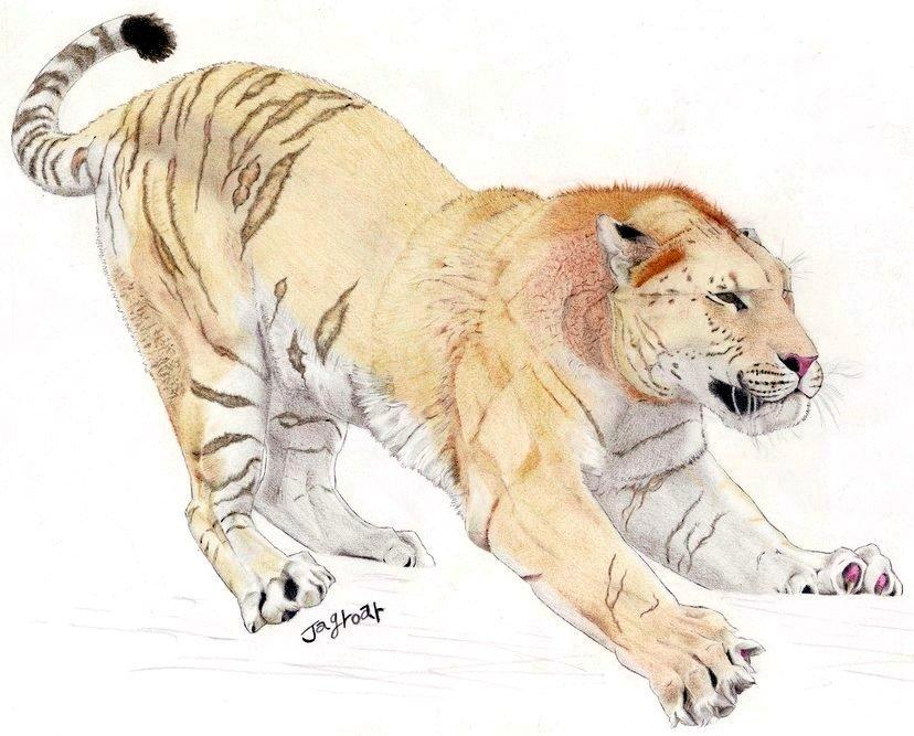 Félins éteints - Page 2 Eurasian_Cave_Lion_by_Jagroar