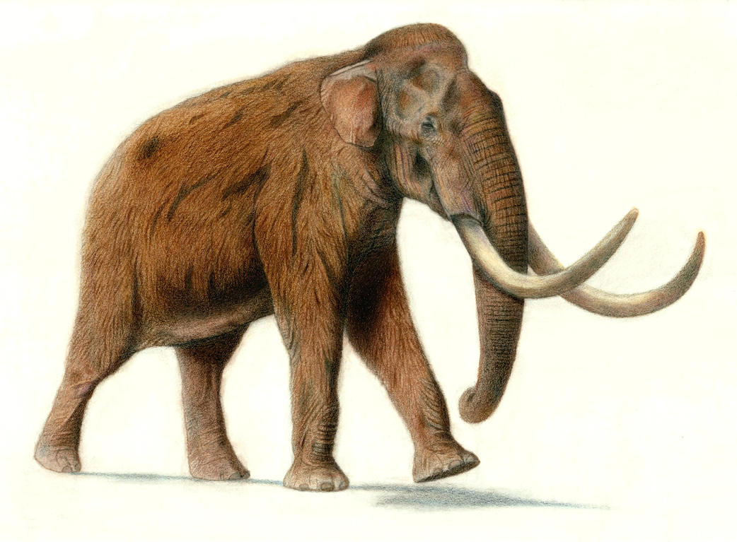 Songhua River Mammoth by Jagroar on DeviantArt