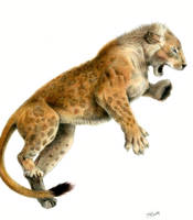 Panthera (leo) fossilis - Mosbach cave lion by Jagroar
