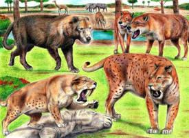 Prehistoric Safari : Miocene Florida by Jagroar