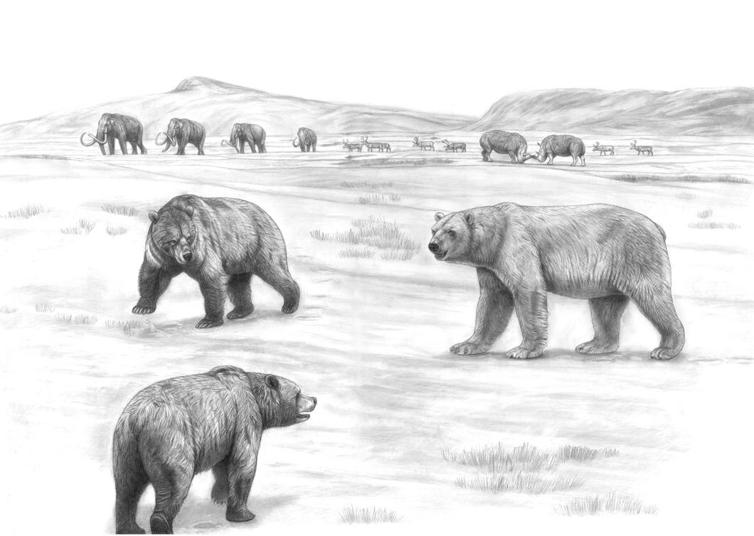 Prehistoric Safari : Britain's Ice Age Mega Bears by Jagroar