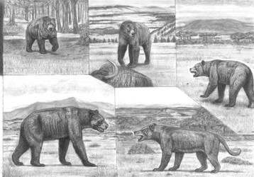 Battle beyond Epochs 2 Big Bears and Beardog study by Jagroar