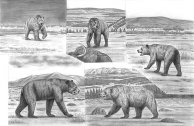 Battle Beyond Epochs 3 : The most colossal Bears by Jagroar