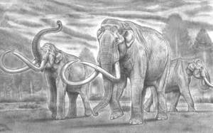 The Great Columbian / Jeffersonian Mammoth by Jagroar