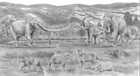 Battle Beyond Epochs:Americas Biggest Land Mammals by Jagroar