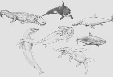Doodling of Top Aquatic Predators (Tournament)