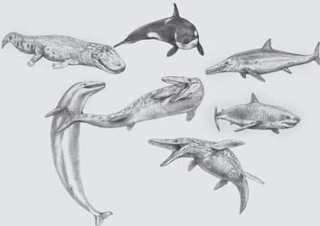 Paleo-Oceanic Rivalry 2 : Top Aquatic Predators by Jagroar